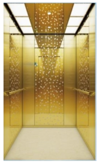 Top Quality High Performance Passenger Elevator with Machine Room 1 buyer
