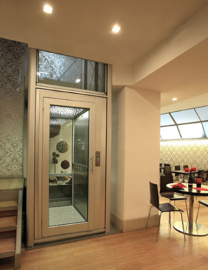 China Factory Villa Used Home Mini Lift, Factory Directly Small Elevator For 2 Person