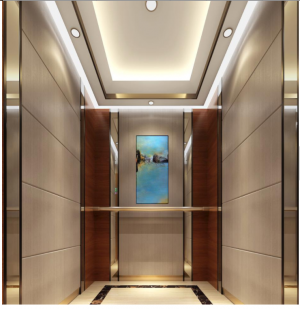 FUJI New Design Fashion Small Home Lift Villa Elevator for Sale
