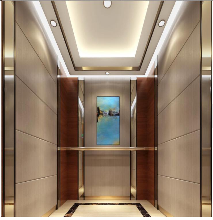 Short Lead Time for Home Mini Lift - FUJI New Design Fashion Small Home Lift Villa Elevator for Sale – Fuji