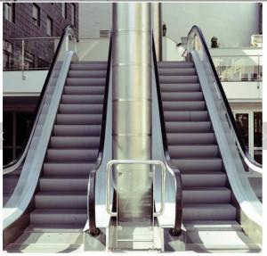 Professional Manufacturer Commercial Centre Indoor Electric VVVF Escalator Design By FUJI